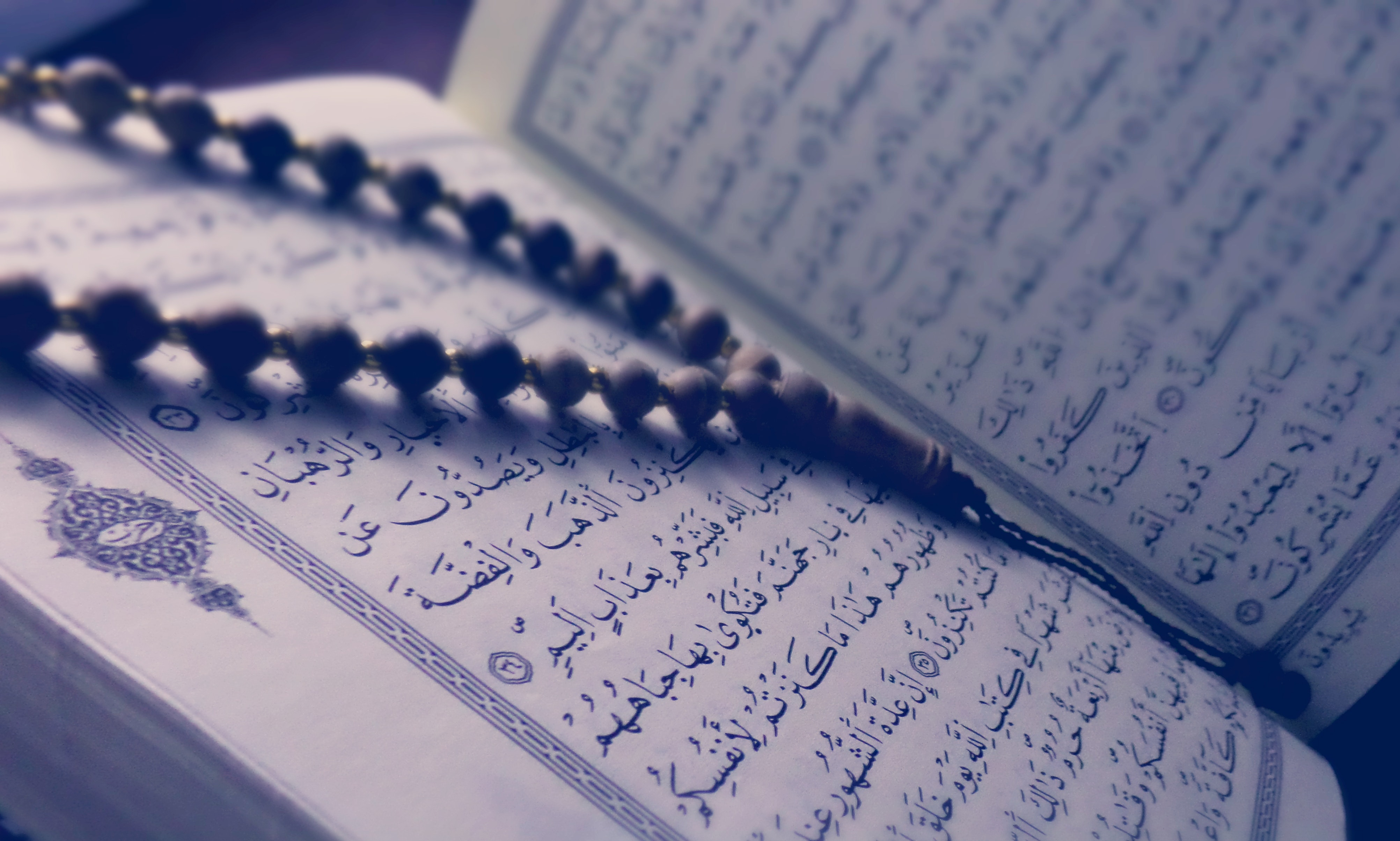 Pious Forgery:  How Islam Remade Its Origins in Its Own Image